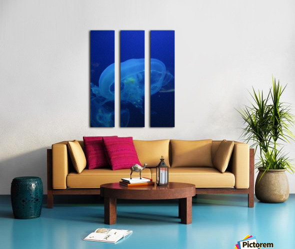 Moon Jelly Split Canvas print