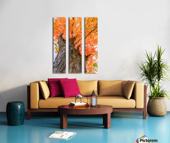 On Fire Split Canvas print