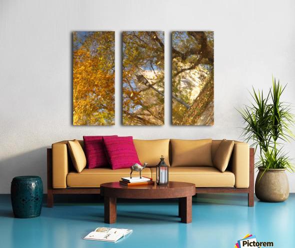 Autumn Reflections I Split Canvas print