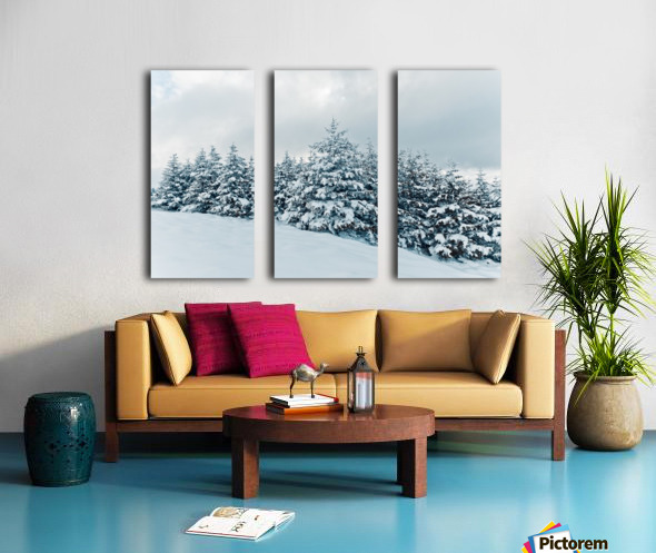 Snow Split Canvas print