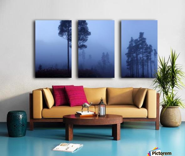 Early Morning Mist Split Canvas print