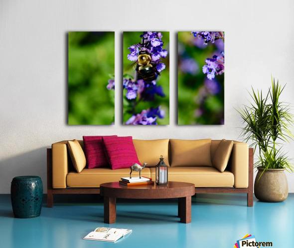 Bumbling Bee 2 Split Canvas print