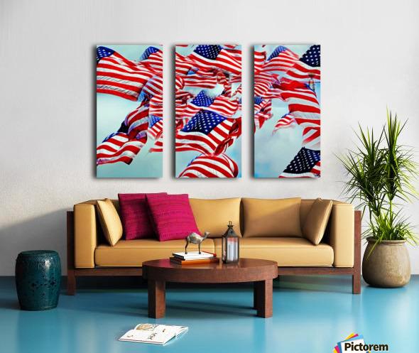 All American Split Canvas print