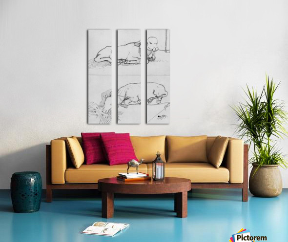 Calf Split Canvas print