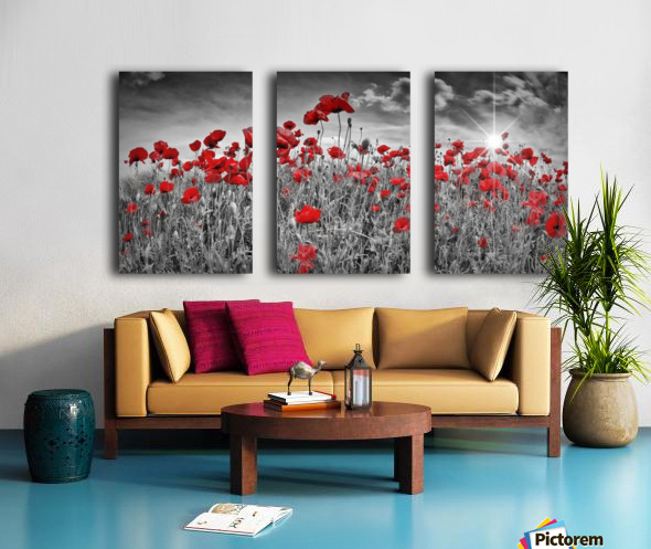 Idyllic Field of Poppies with Sun Split Canvas print