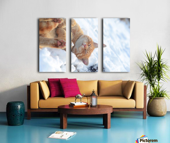 Rolling Split Canvas print