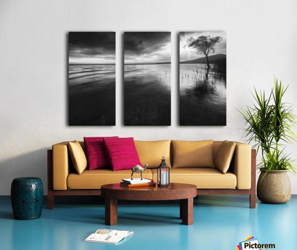 Sugar Split Canvas print