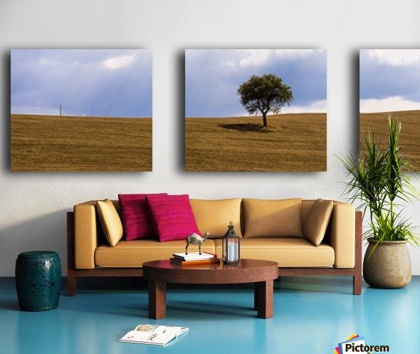 Tuscany Tree Split Canvas print