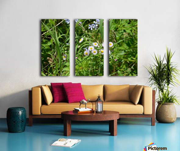 Wild flowers Split Canvas print