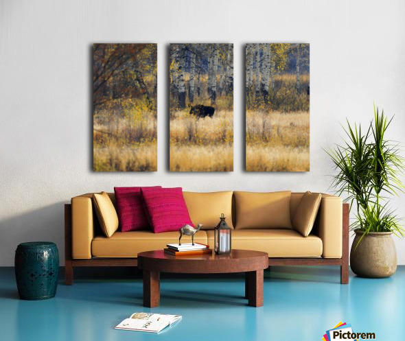 Early light in Gros Ventre Split Canvas print