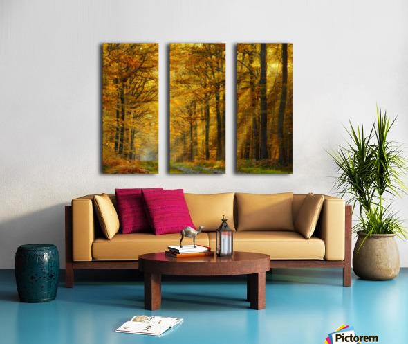 Enchanted Forest Split Canvas print