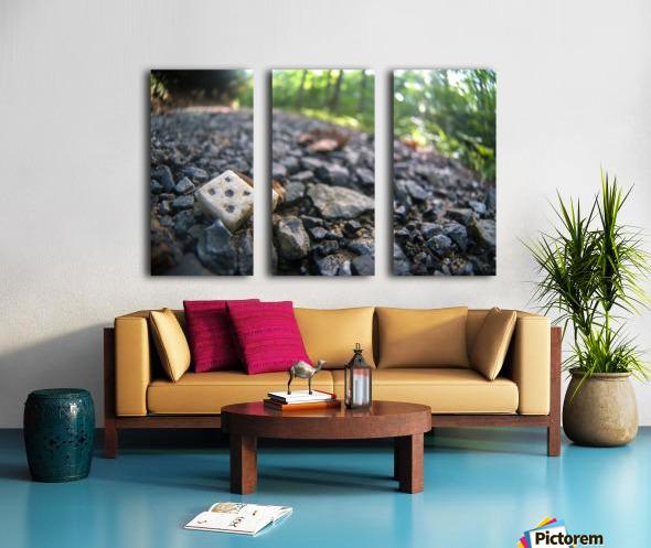 P1450797 Split Canvas print