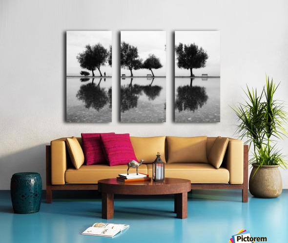 KarAŸA±yakalA±lar Split Canvas print