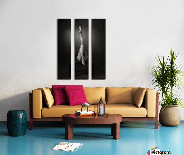 One Up, One Down Split Canvas print