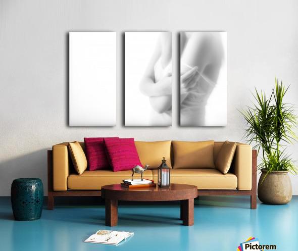 Undress Split Canvas print