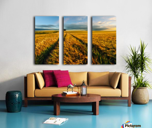 Countryside Split Canvas print