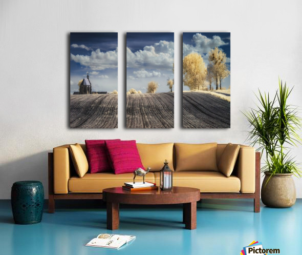 IRenkowo Split Canvas print