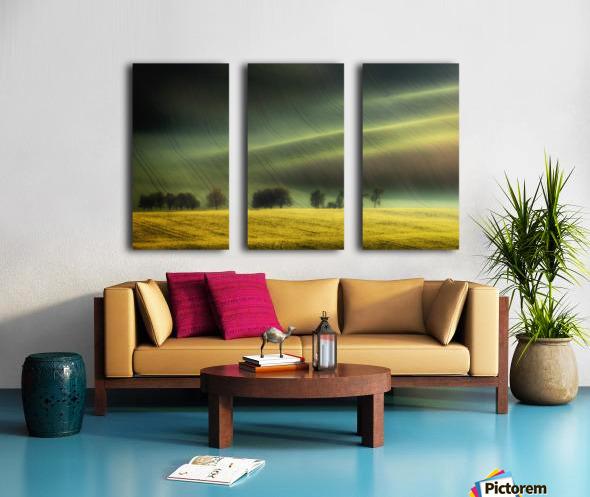 spring fields Split Canvas print