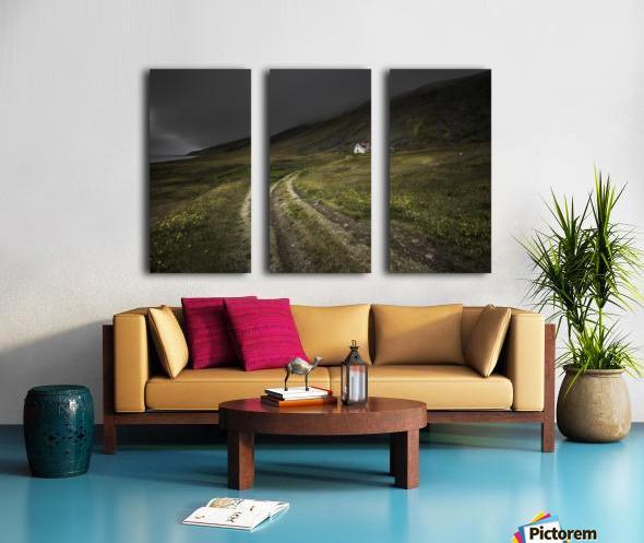 Raw Split Canvas print