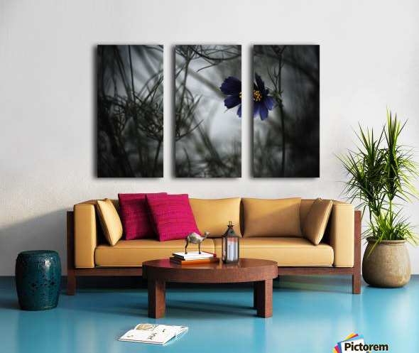 When Cosmos will be blue Split Canvas print