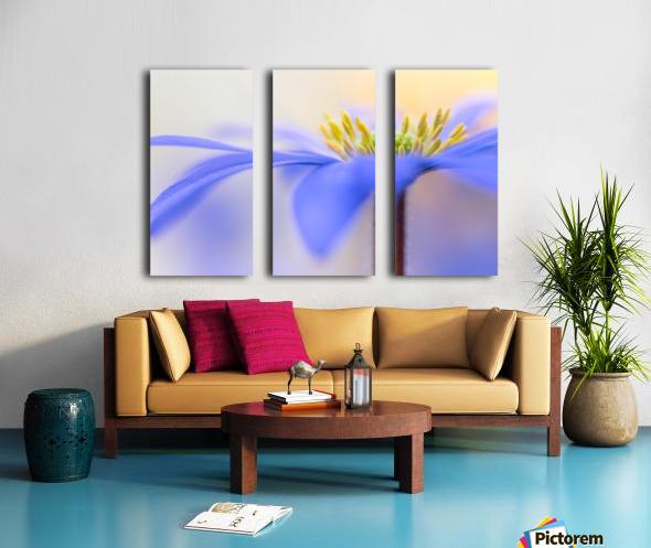 Pure ... Split Canvas print
