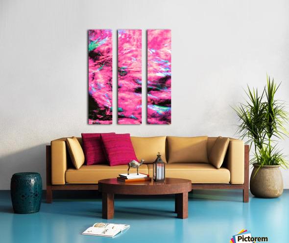 The Flock Pink Split Canvas print
