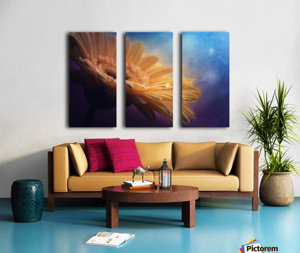 Universe Split Canvas print