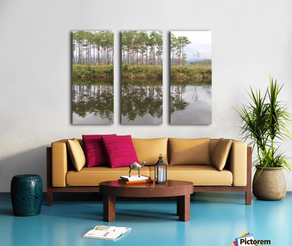 Sky, Water & Trees Split Canvas print