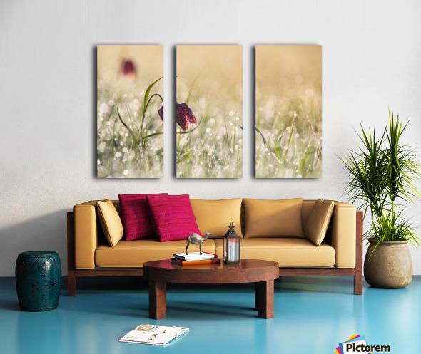 Morningdew Split Canvas print