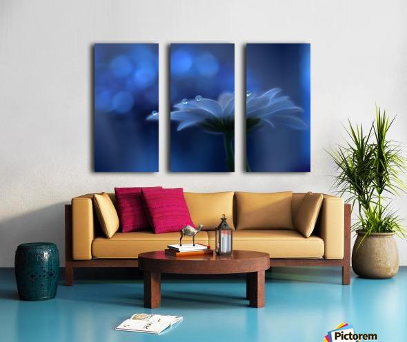 Space Dreams... Split Canvas print