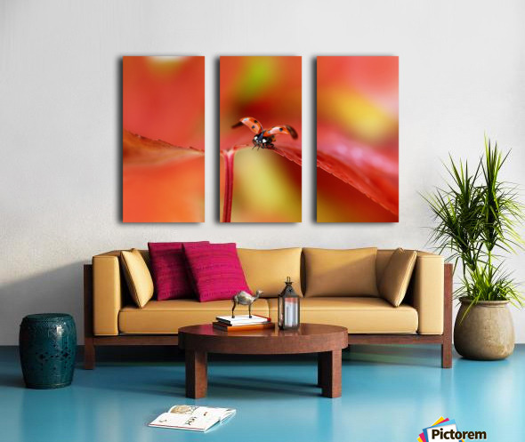 Ladybird in autumn Split Canvas print