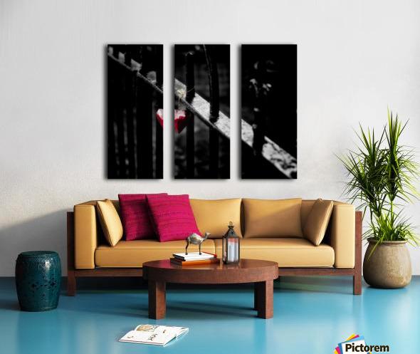 Lonely Split Canvas print