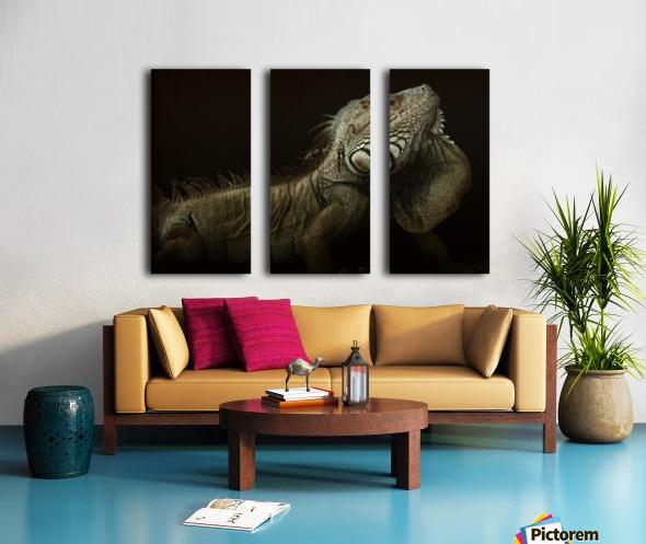 Iguana profile Split Canvas print