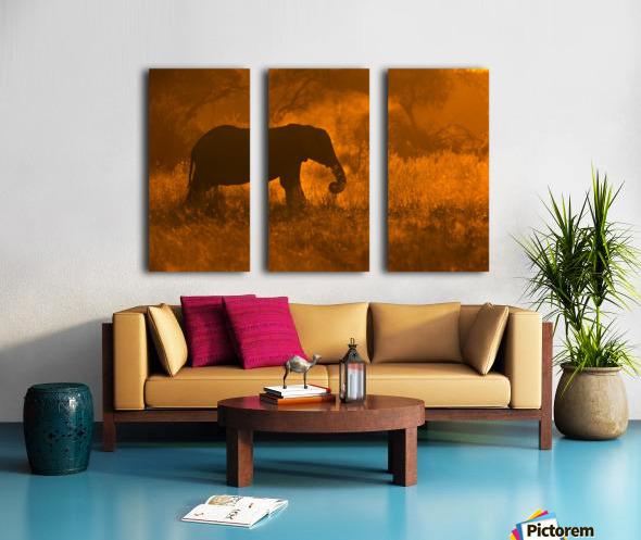 Golden Elephant in Savute Split Canvas print
