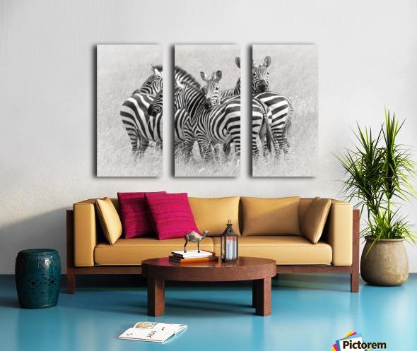 Zebras Split Canvas print