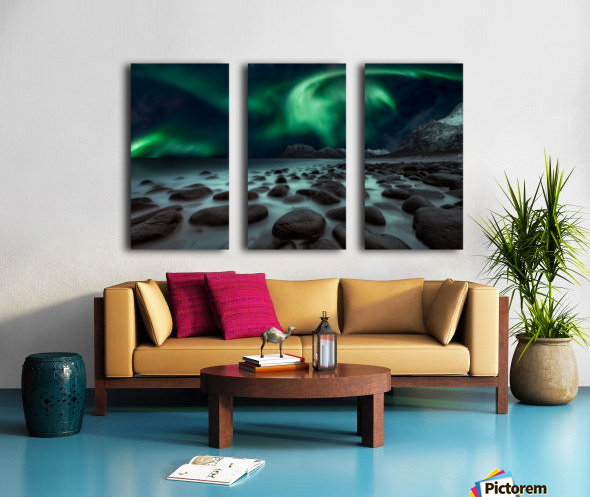 Dragon's Fly Split Canvas print