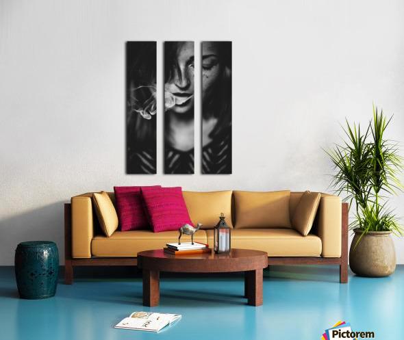 Smokey Split Canvas print