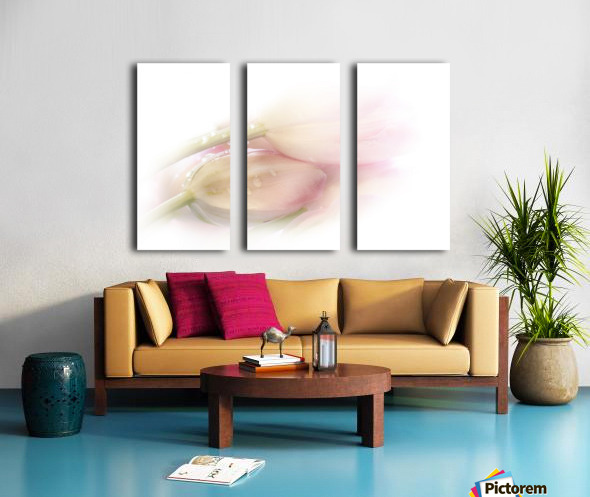 Touching Split Canvas print