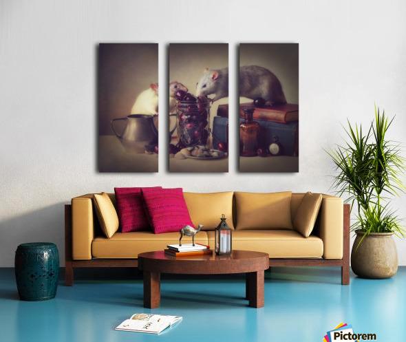 Snoozy and Jimmy Split Canvas print
