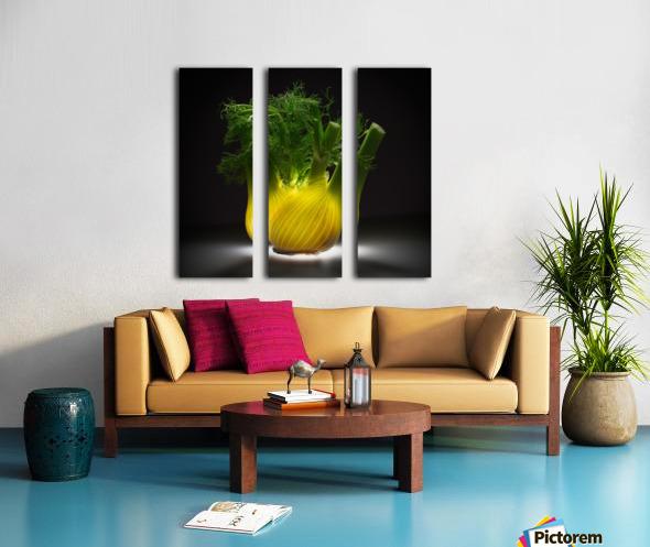 Fennel Split Canvas print