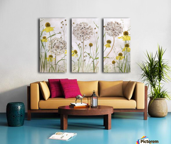 Alliums and heleniums Split Canvas print