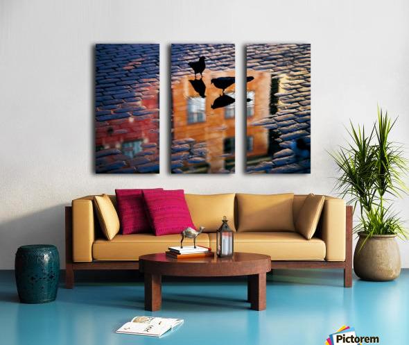 Pigeons Split Canvas print