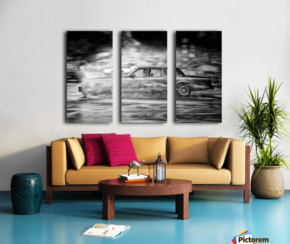 Dissection Split Canvas print