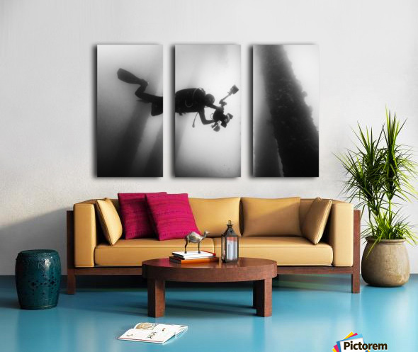 Fall into the silence Split Canvas print