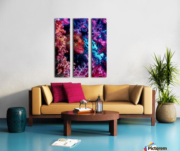 Coral Hind Split Canvas print