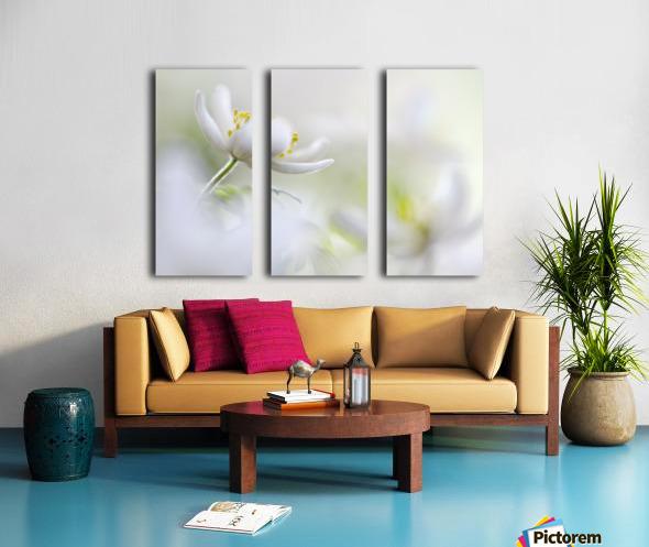 White Spring Split Canvas print