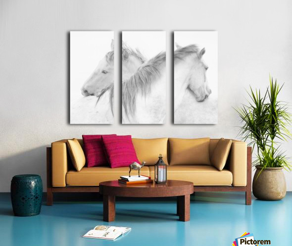 Horses Split Canvas print
