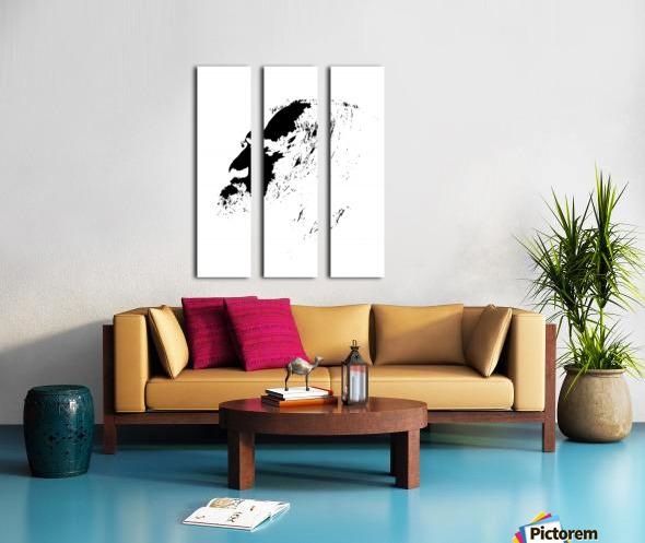 Monsieur Split Canvas print