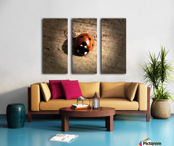 Lady Bird Bug Split Canvas print