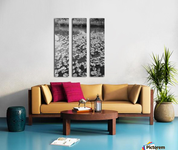 Weeping Lillies Split Canvas print